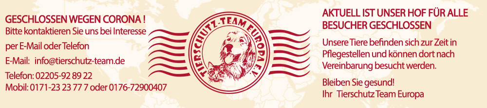 Tierschutz-Team